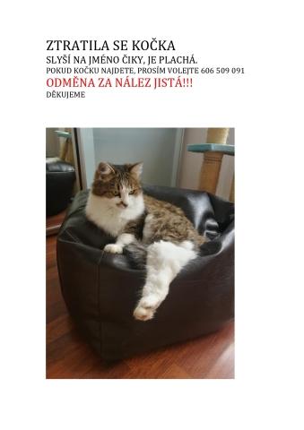 ZTRATILA SE KOČKA_page-0001